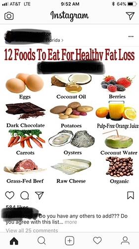 Fat2fit doc