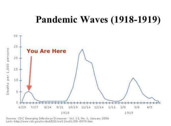 PandemicWaves