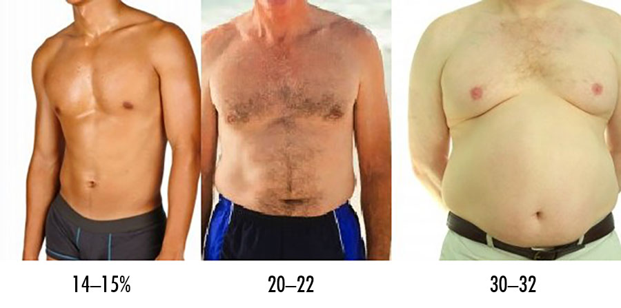 to-lose-body-fat-not