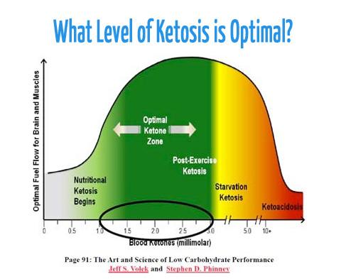 ketosistix_graph