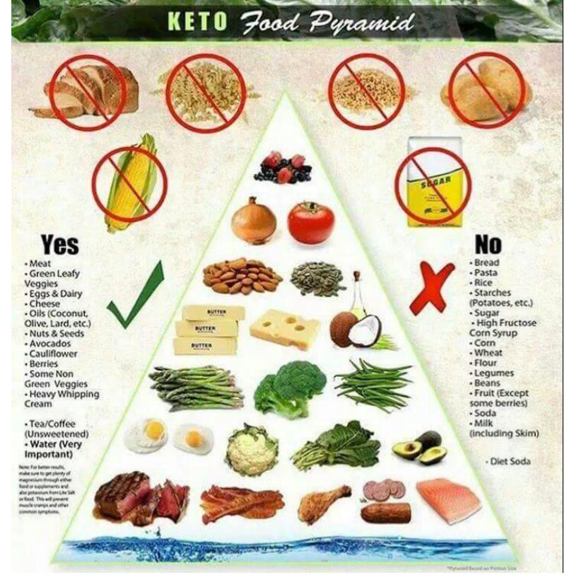Best Ketogenic Vegetables In Order Of Importance For You
