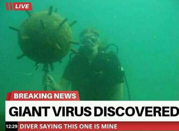 GiantVirus